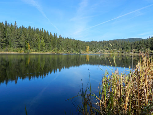 White Pines Lake in Arnold, California